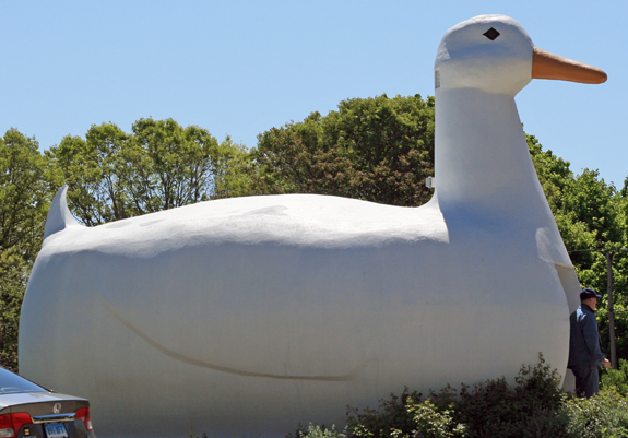 The Big Duck of Long Island